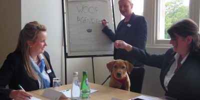 Pets Welcome Initiative at Stoke Rochford Hall Grantham